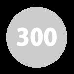 castellex series 300