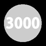 castellex series 3000